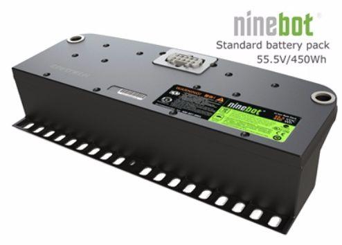 Ninebot_batteria
